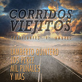 Play & Download Corridos Viejitos, Traficantes y Amores: Lamberto Quintero, Los Perez, Mil Punales y Mas by Various Artists | Napster