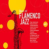 Play & Download Best of Flamenco Jazz, Vol. 1 by Various Artists | Napster