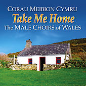 Take Me Home (Corau Meibion Cymru / Great Choirs Of Wales) by Various Artists
