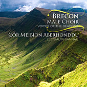 Play & Download Lleisiau'R Bannau/Voices Of The Beacons by Cor Meibion Aberhonddu | Napster