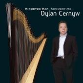 Hirddydd Haf / Summertime by Dylan Cernyw