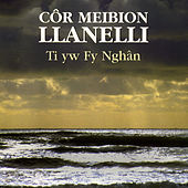 Ti Yw Fy Nghan by Cor Meibion Llanelli Male Voice Choir