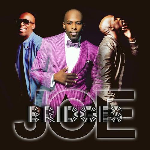 Bridges by Joe