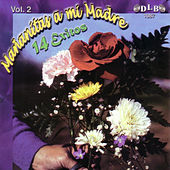 Mananitas a Mi Madre: 14 Exitos, Vol. 2 by Various Artists