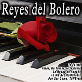 Reyes del Bolero by Various Artists