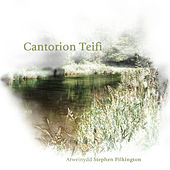 Play & Download Cantorion Teifi by Cantorion Teifi Singers | Napster
