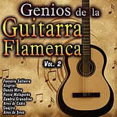 Genios de la Guitarra Flamenca, Vol. 2 by Various Artists