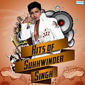 Hits of Sukhwinder Singh by Various Artists