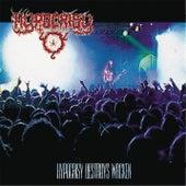 Destroys Wacken by Hypocrisy
