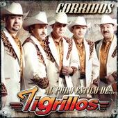 Corridos Al Puro Estilo De by Los Tigrillos