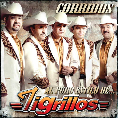 Play & Download Corridos Al Puro Estilo De by Los Tigrillos | Napster