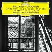 Bruckner: Mass in D minor; Motets by Various Artists