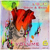 Liquid D&B Essentials 2014 Vol. 6 - EP by Various Artists