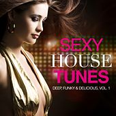 Play & Download Sexy House Tunes - Deep, Funky & Delicious, Vol. 1 by Various Artists | Napster