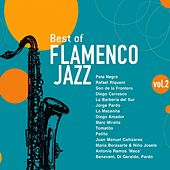 Play & Download Best of Flamenco Jazz, Vol. 2 by Various Artists | Napster