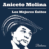 Play & Download Los Mejores Éxitos de Aniceto Molina by Various Artists | Napster