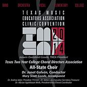 Play & Download 2014 Texas Music Educators Association (TMEA): Texas Two Year College Choral Directors Association All-State Choir by Texas Two Year College All State Choir | Napster