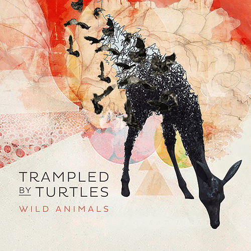 Wild Animals by Trampled by Turtles