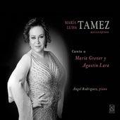 Play & Download Canta a Maria Grever y Agustin Lara by María Luisa Tamez | Napster