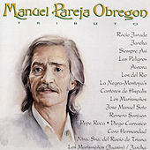 Play & Download Manuel Pareja Obregoni Tributo by Various Artists | Napster