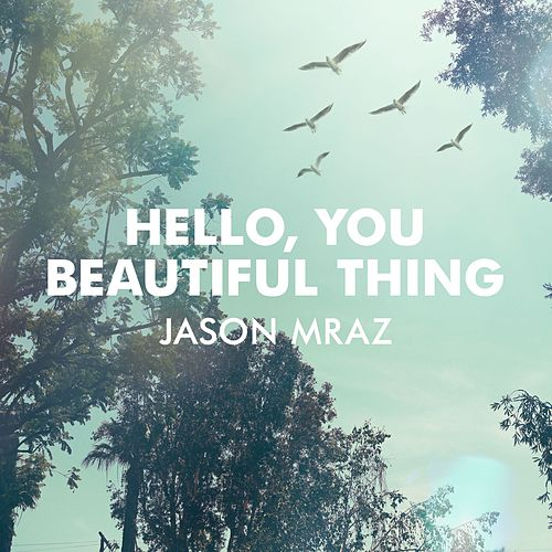 Hello, You Beautiful Thing by Jason Mraz