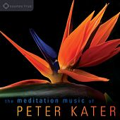 Play & Download The Meditation Music of Peter Kater: Evocative, expressive instrumental music for meditation by Peter Kater | Napster