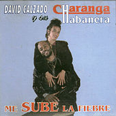 Play & Download Me sube la fiebre by David calzado y su Charanga Habanera | Napster