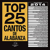 Play & Download Top 25 Cantos De Alabanza by Various Artists | Napster