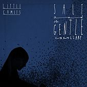 Salt and Its Gentle Corollary by Little Comets