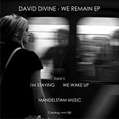 Play & Download We Remain - Single by David Divine | Napster