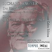 Play & Download Richard Wagner: Twilight of the Gods, WWV 86D: Siegfried's Funeral March by Maximianno Cobra | Napster