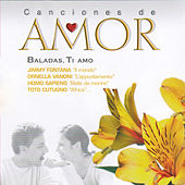 Baladas Ti Amo by Various Artists