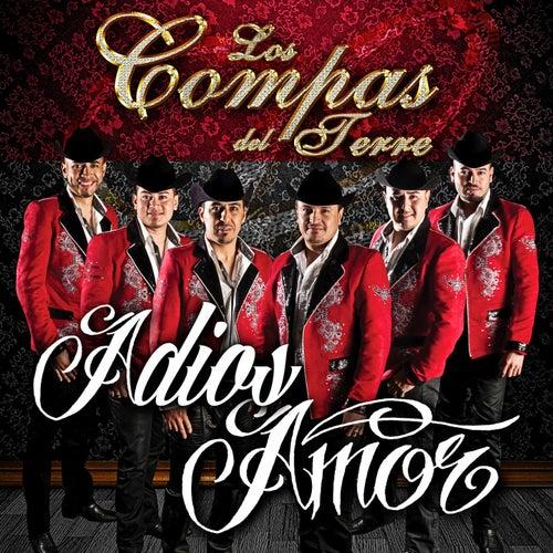 Play & Download Adios Amor by Los Compas del Terre | Napster