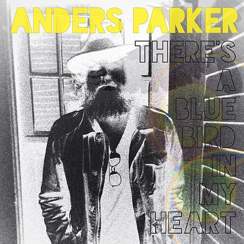 There's A Blue Bird In My Heart by Anders Parker