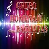 Play & Download Canta las Canciones de Bachatas by Grupo Homenaje | Napster