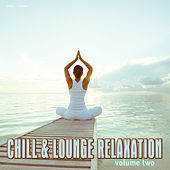 Play & Download Chill & Lounge Relaxation, Vol. 2 by Various Artists | Napster