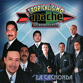 Play & Download La Cachonda by Tropicalisimo Apache | Napster