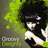 Play & Download Groovy Delights by Various Artists | Napster