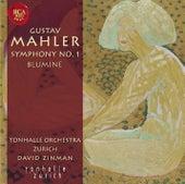 Play & Download Gustav Mahler: Sinfonie Nr. 1 by David Zinman | Napster