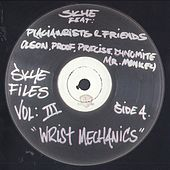 Play & Download Skye Files Volume III by Skye | Napster