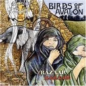Play & Download Bazaar Bazaar by Birds Of Avalon | Napster