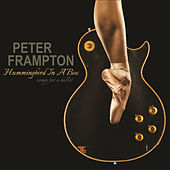 Hummingbird in a Box by Peter Frampton