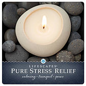 Play & Download Pure Stress Relief by Hubbub Music Inc. | Napster