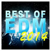 Play & Download Best Of EDM 2014 - EP by Various Artists | Napster