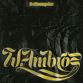 Hoffnungslos (Remastered Version) by Wolfgang Ambros