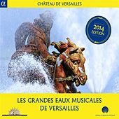 Play & Download Les grandes eaux musicales de Versailles by Various Artists | Napster