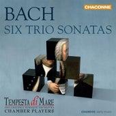J.S. Bach: 6 Trio Sonatas (Arr. R. Stone for Chamber Ensemble) by Tempesta di Mare