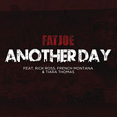 Another Day by Fat Joe