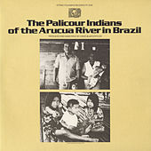 Palicour Indians Of The Arucua River In Brazil by Various Artists