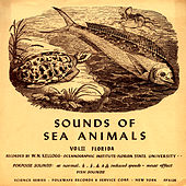 Sounds of Sea Animals, Vol. 2: Florida by Unspecified
